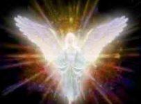 ANGELI DEL KARMA