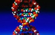 Dna Light Integrative Attunements 13