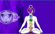 Chakra Prana Empowerments 11