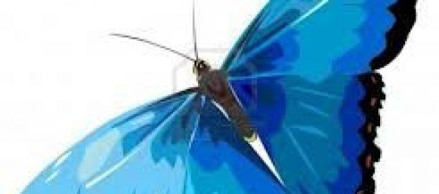 Butterfly Reiki Healing 7