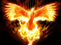 Fire of the Phoenix Reiki 22