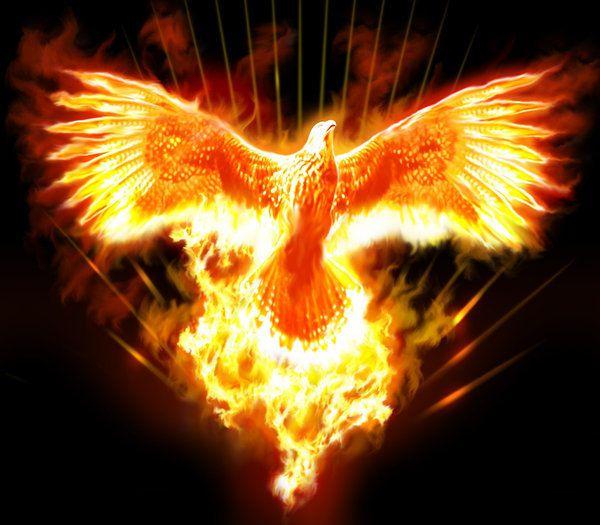 fenice di fuoco - Phoenix Rising Reiki